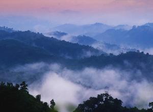 Niebla sobre las montañas en el Valle Sajek en Bangladés