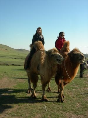 Volunteers traveling in Mongolia