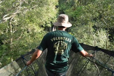 Voluntario de Conservación en la selva amazónica
