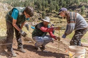 Voluntarios de Projects Abroad en el proyecto de Arqueología en Perú asisten a un miembro del personal local en una excavación en el sitio Sacsayhuaman.