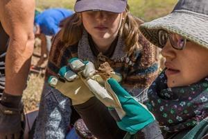 Una voluntaria y una arqueóloga local examinan un hueso en una excavación en Perú.