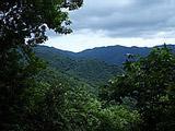Conservación de Bosques Secos Tropicales