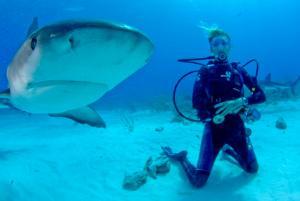 Una voluntaria del proyecto de Conservación de Tiburones junto a un tiburón en Fiyi.