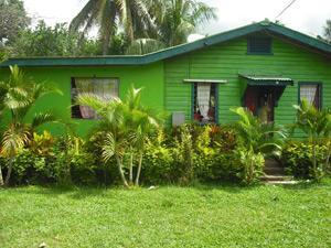 Volunteer on a Community Village Project in Fiji