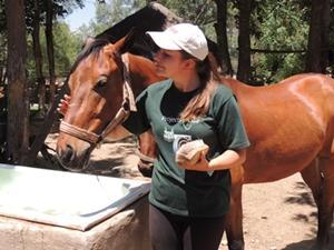 Voluntaria de Projects Abroad asiste con el cuidado de los caballos de equinoterapia en Bolivia.