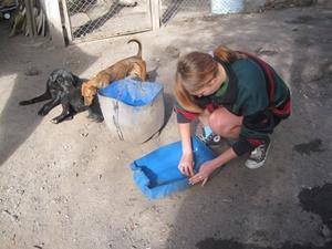 Voluntaria adolescente en su trabajo de Cuidado Animal en Argentina