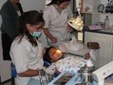 Dentistry in Bolivia