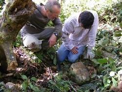 Voluntarios estudiando un hallazgo arqueológico encontrado en Perú