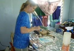 Veterinaria voluntaria ayudando a un gato en el proyecto de veterinaria de Projects Abroad en Samoa