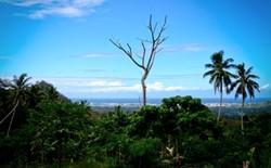 Impresionante emplazamiento del proyecto para terapeutas ocupacionales voluntarios en Samoa