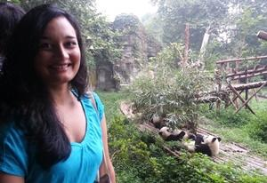 Projects Abroad Animal Care with Pandas Volunteering