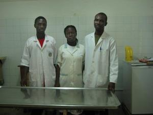 Veterinary interns abroad
