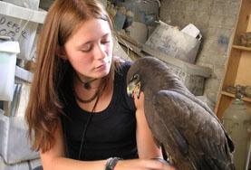 Medicina Veterinaria y Cuidado de Animales