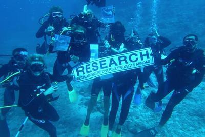 Grupo de voluntarios mayores participando en actividades de buceo en Fiyi